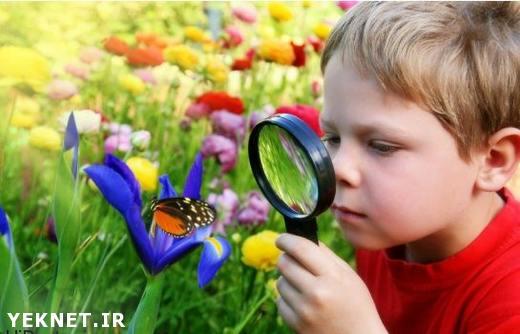 کنجکاوی