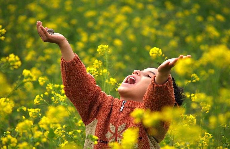 تجارت از شادی